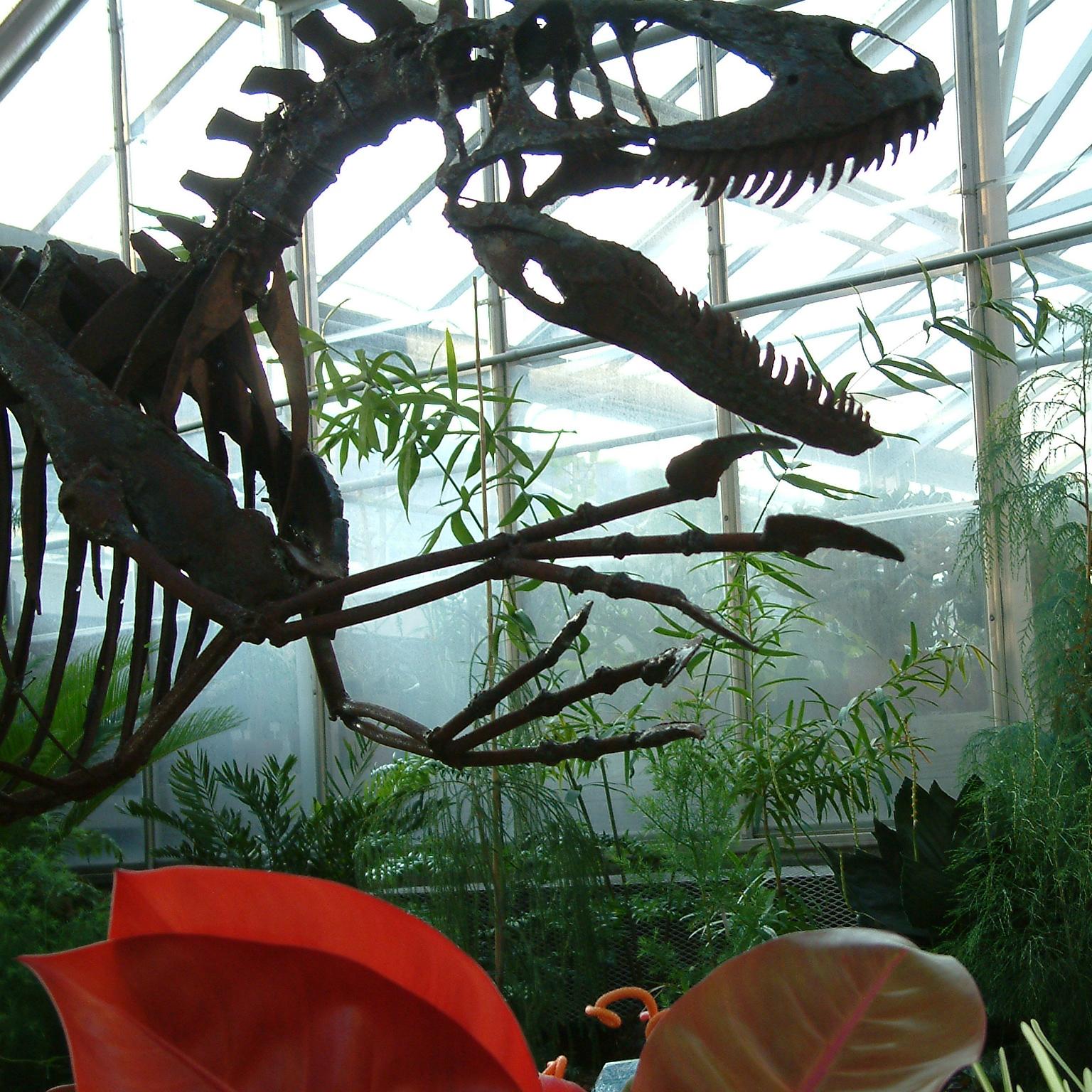 Genial Square Dinosauru0027s Garden At McMillan Greenhouse   TLM