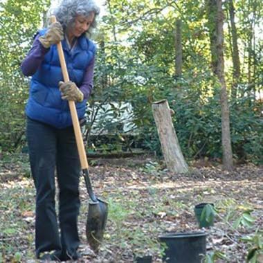 square elizabeth volunteering in glen nov 07