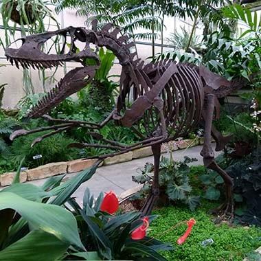 Botanical Gardens | McMillan Greenhouse