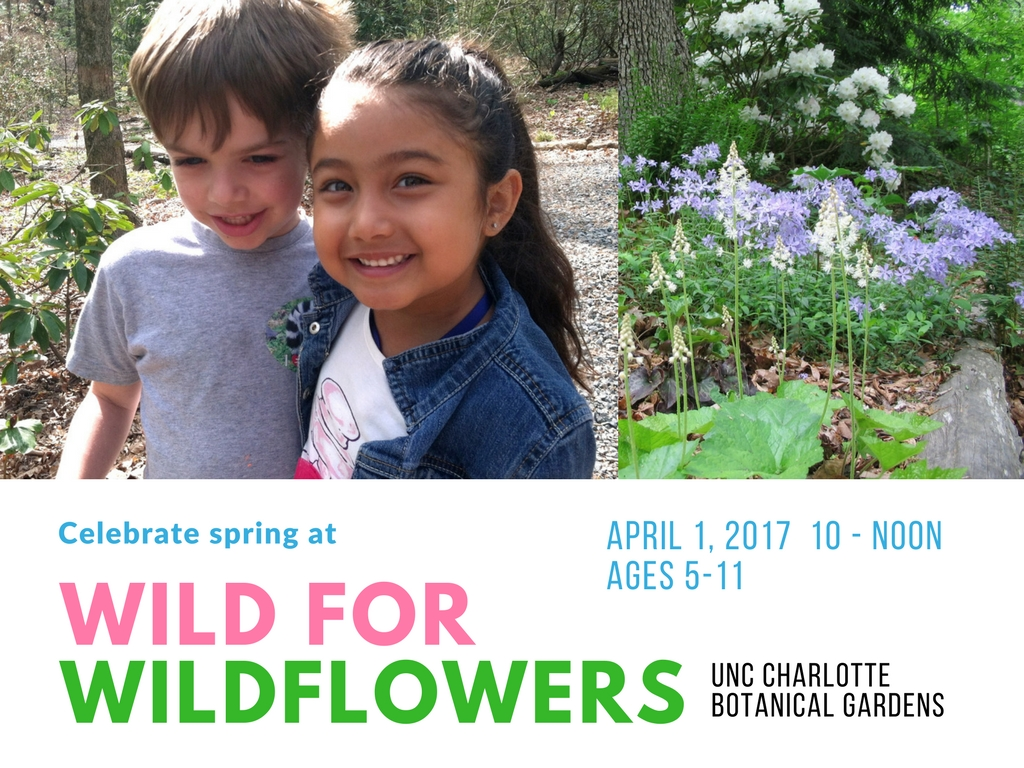 Wild For WIldflowers-definite final