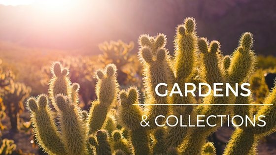 gardens and collections