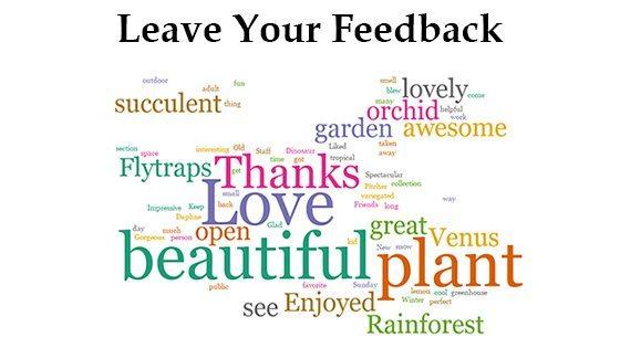 feedback wordcloud
