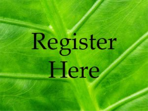 This image has an empty alt attribute; its file name is register-leaf-300x225.jpg