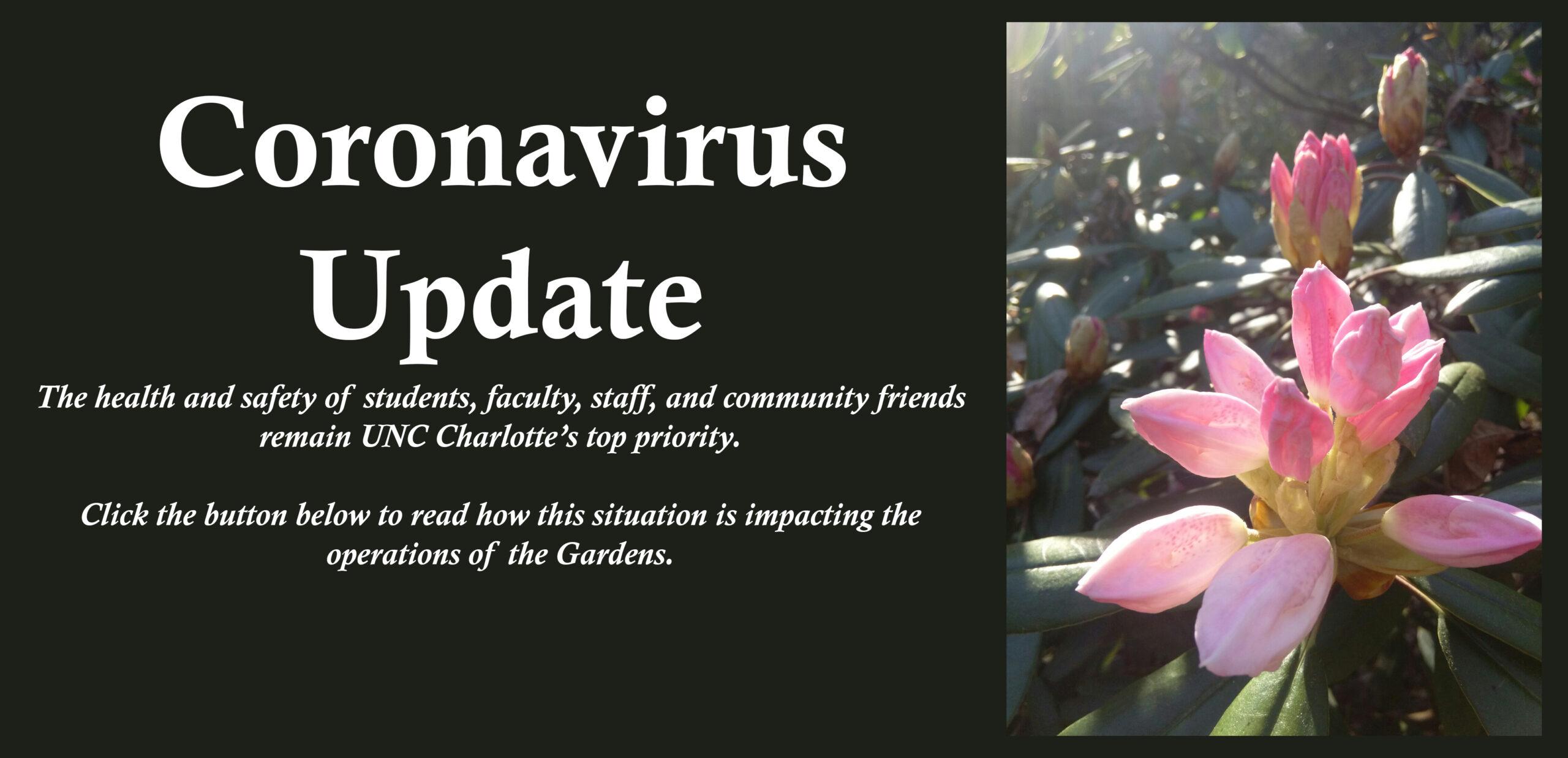 coronavirus soliloquy v2