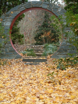 moon-gate-in-autumn