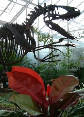 Nykie - Life-size Deinonychus sculpture