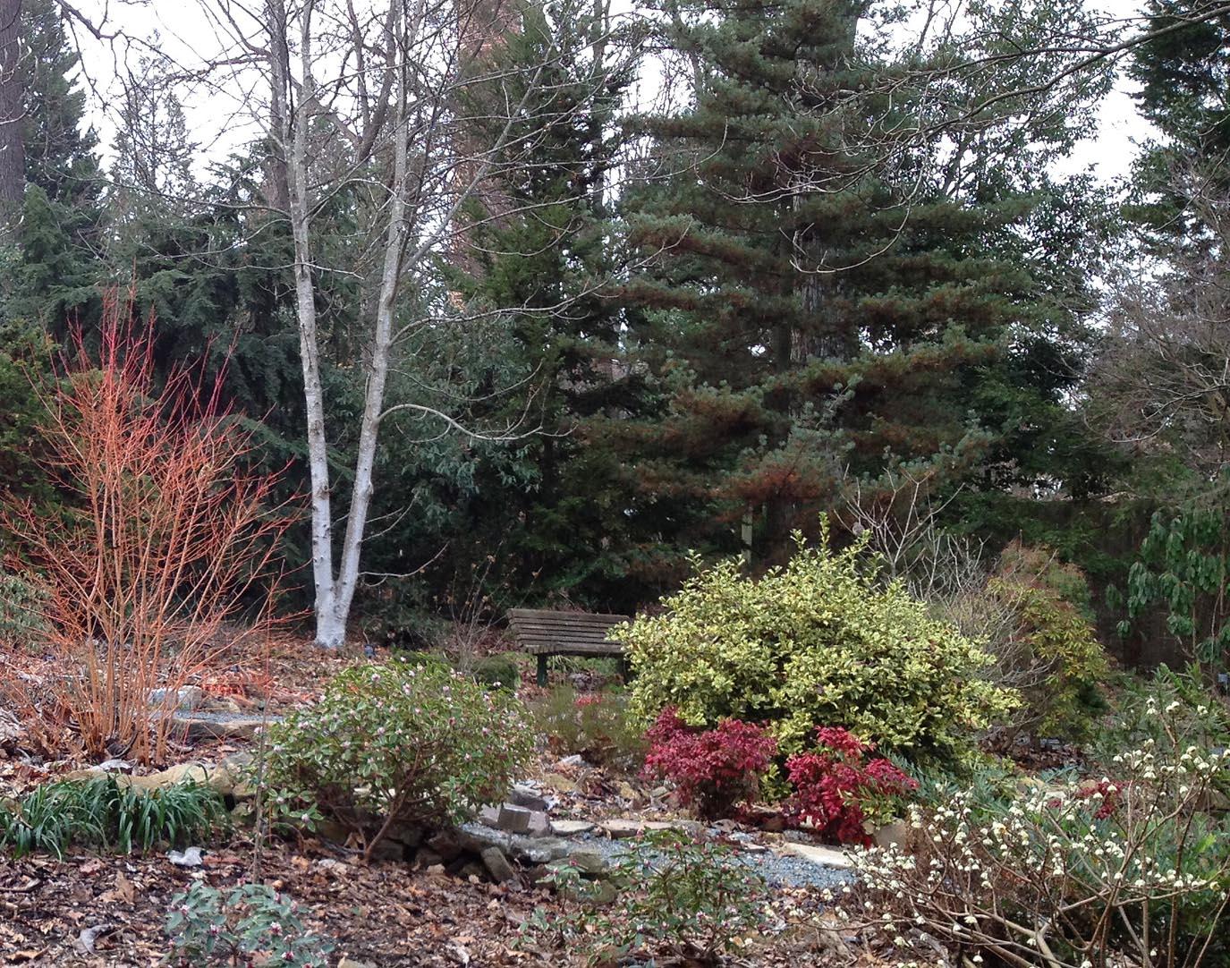 2013-winter-garden