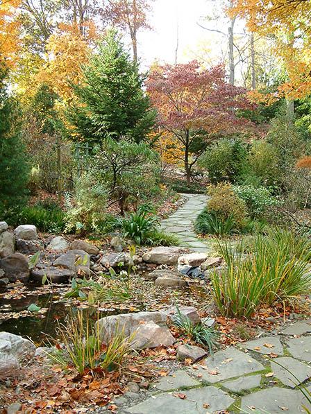harwood-autumn-scene