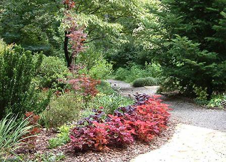 harwood-summer-path