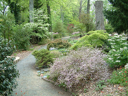 harwood-upper-trail