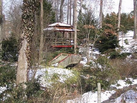 harwood-snow